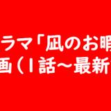 ドラマ「凪のお暇」 動画(1話~最新話)
